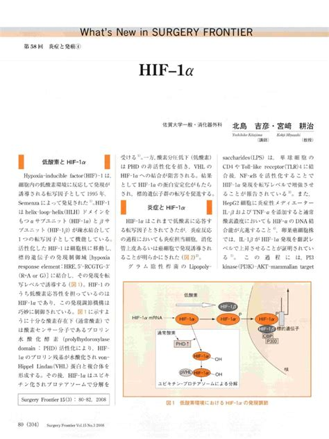 What's New in SURGERY FRONTIER 第58回炎症と発癌 HIF-1α | M-Review